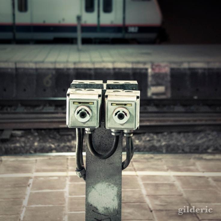 Wall-E en visite ?