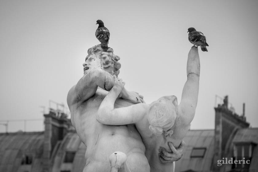 Dieux antiques et pigeons