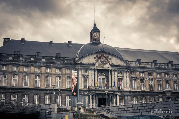 Dark Summer : Palais des Princes-Evêques, Liège