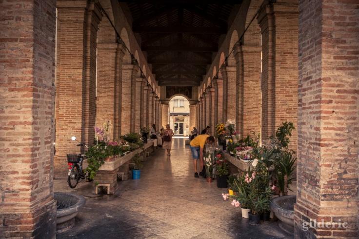 Antica Pescheria, Piazza Cavour à Rimini