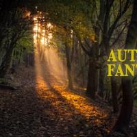 Autumn Fantasy : l'automne en photos et vidéos