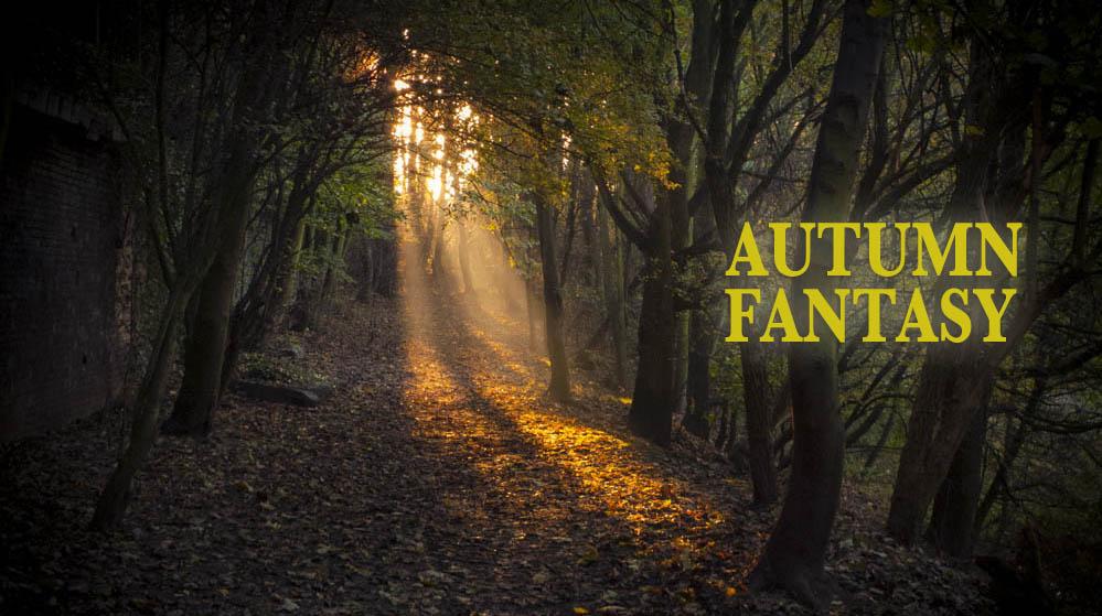 Autumn Fantasy : l'automne en photos etvidéos
