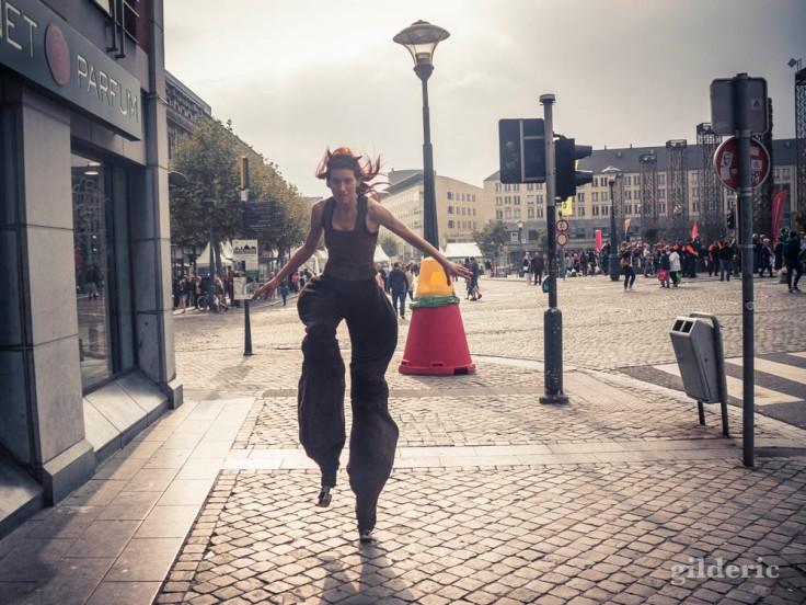 Faune dans les rues (Wallos de Liège 2016)