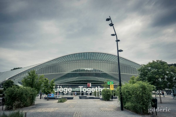 Liege Together & Liège-Guillemins