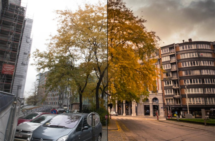 Before/After (photo d'automne sur Lightroom)