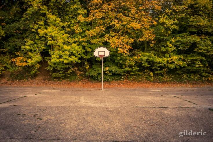 Pas de basket-ball en automne (La Chartreuse, Liège)