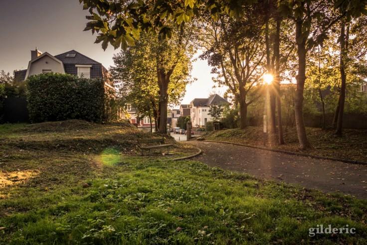 Fin de journée, été indien, Parc de la Chartreuse, Liège