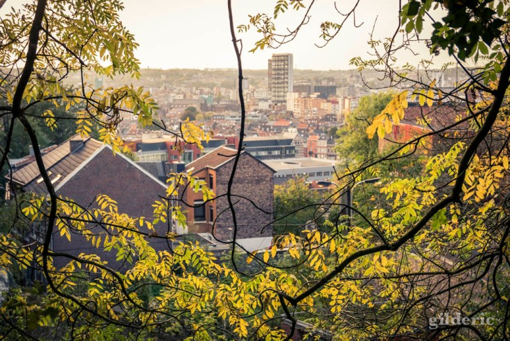 Feuillages d'automne et point de vue sur Liège