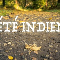 Autumn Fantasy : Eté indien (Indian Summer)