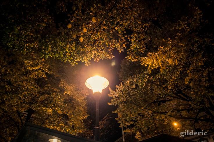 Lampadaire et ambiance d'automne