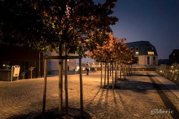 Ombres, nuit et couleurs d'automne