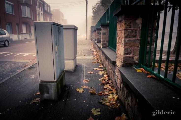 Brouillard d'automne en ville