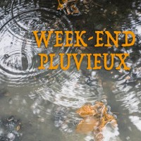 Week-end pluvieux