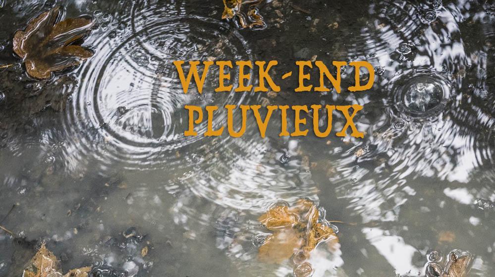 Week-end pluvieux : flaques, reflets et photographie