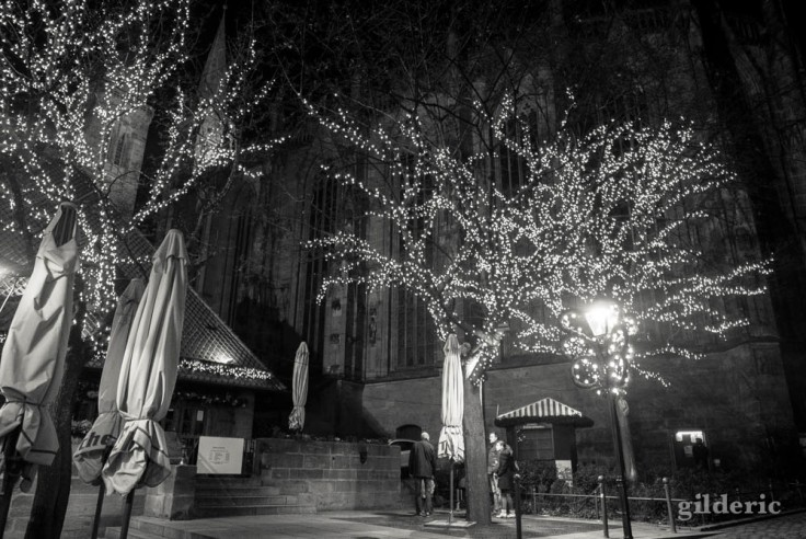Arbres illuminés à Nuremberg