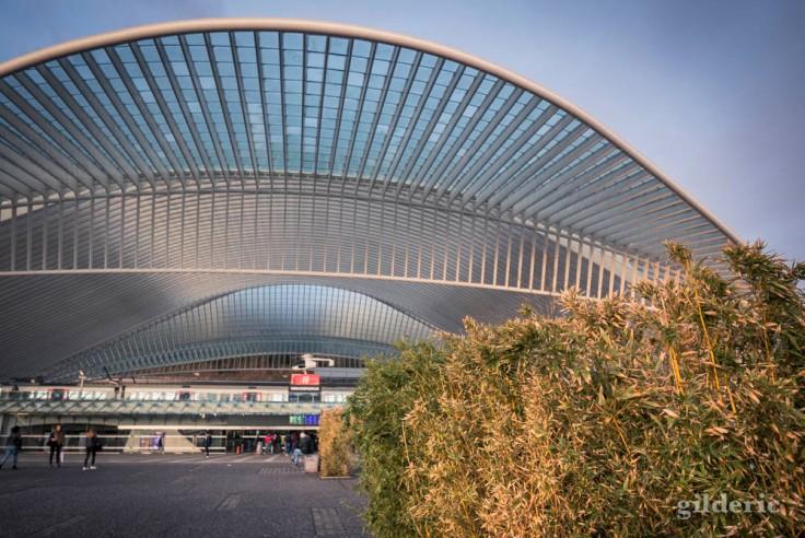 Un matin à la gare de Liège-Guillemins