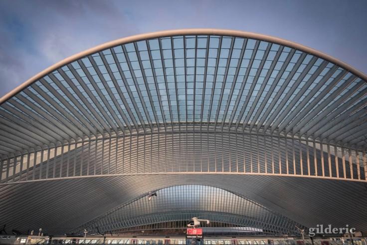La gare de Liège-Guillemins rayonne