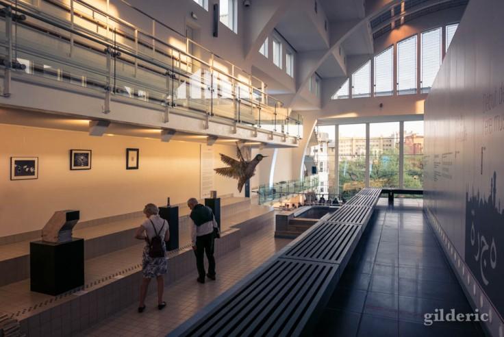 Exposition Librarty à la Cité Miroir