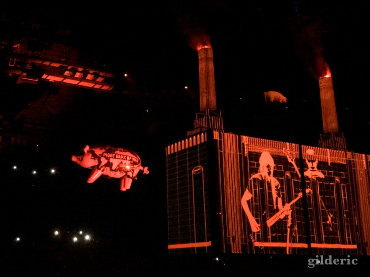 "Roger Waters ""Us + Them Tour"" live à Anvers : Pigs"