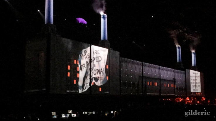 "Roger Waters ""Us + Them Tour"" live à Anvers : Dogs"