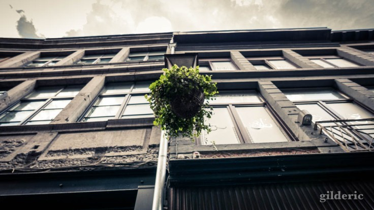 La Rue aux enfants en Neuvice (Liège)