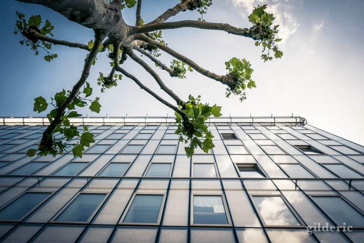 Comment photographier la ville : regardez en l'air