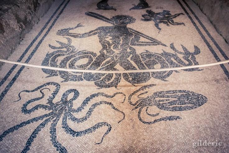 Mosaïque des thermes romains d'Herculanum