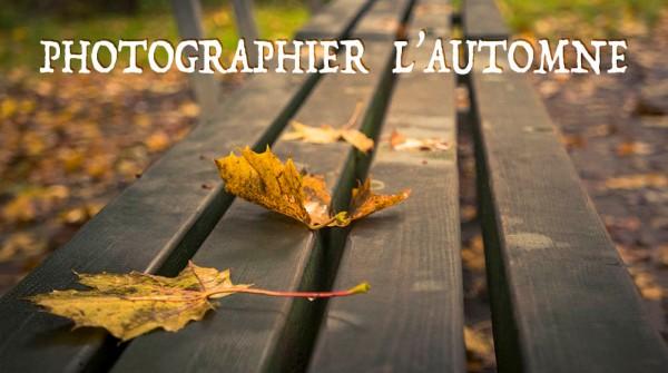 Photographier l'automne : astuces et exemples
