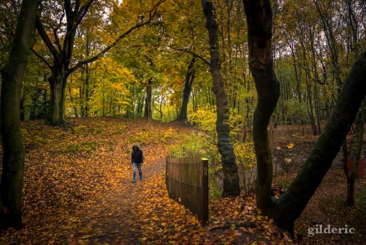 Conte d'automne (avec personnage), la Chartreuse (Liège)