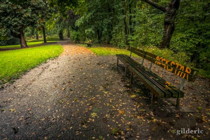 Début d'automne : un banc, des feuilles et de la verdure (Parc de la Chartreuse, Liège)