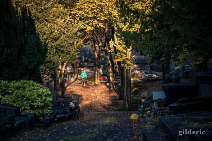 Photographier la Toussaint (au cimetière de Robermont)