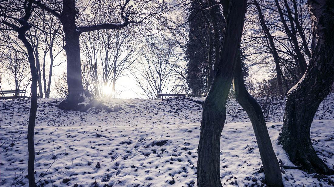 Dimanche neigeux à la Chartreuse