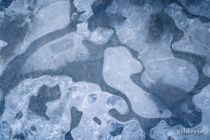 Gros plan sur la glace (La Chartreuse, Liège)