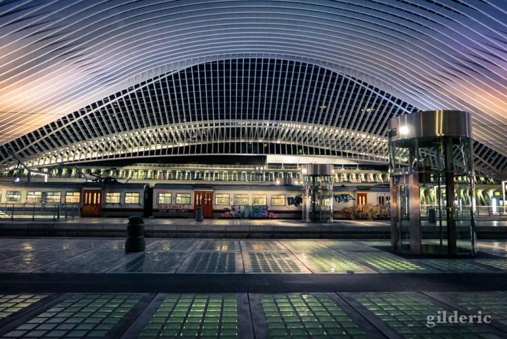 Gare de Liège-Guillemins (la nuit)