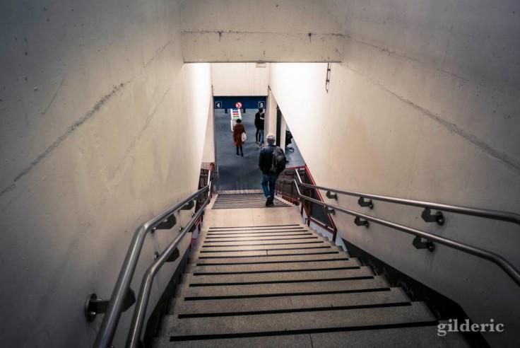 Escalier vers les quais, en Gare de Namur