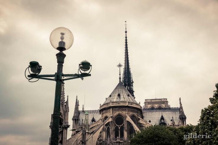 Notre-Dame de Paris (vue de dos)