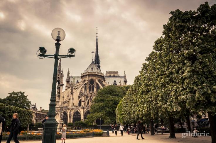 Notre-Dame de Paris (vue du parc)