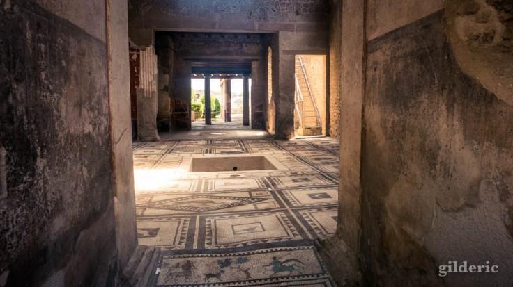 Maison de Paquius Proculus à Pompei