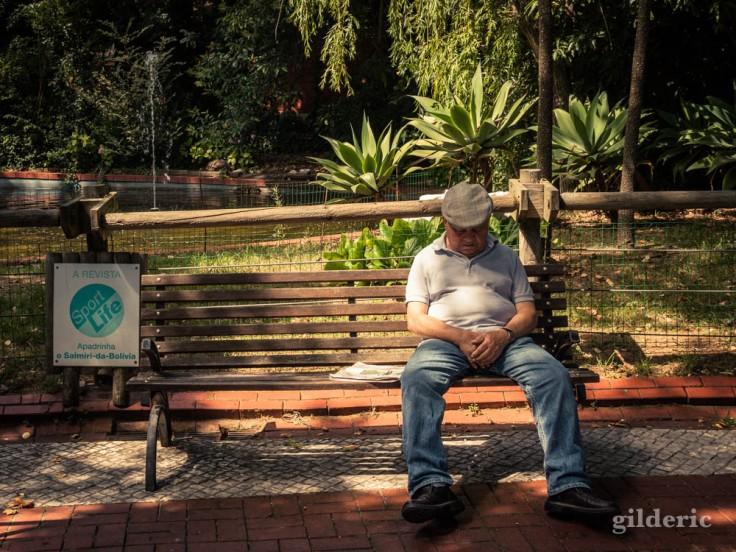 Street photography à Lisbonne : sieste au zoo