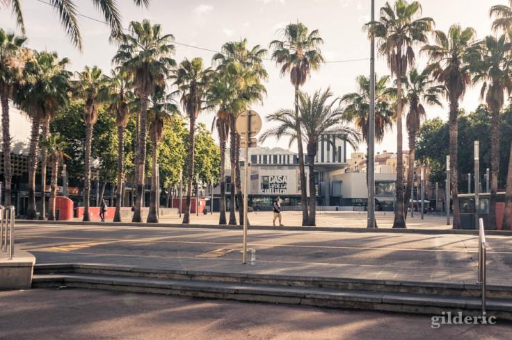 Lloret de Mar : des arbres et des touristes