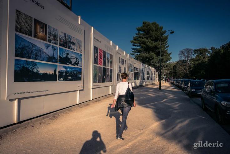Bois de Boulogne, près de la Fondation Louis Vuitton