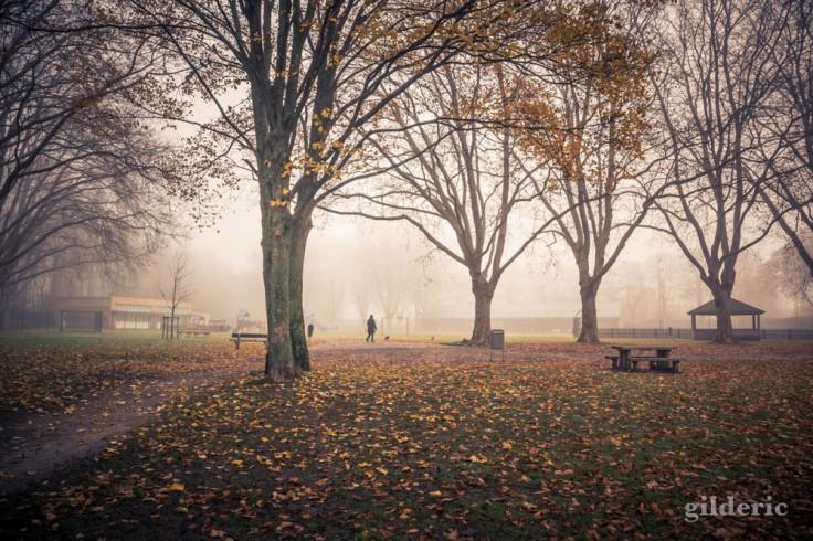 Promenade sous les arbres de Péville