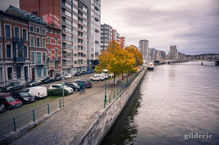 Arbre sur les quais de la Meuse à Liège en automne