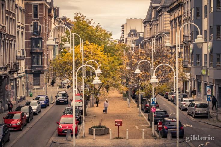 Boulevard Saucy en automne à Liège
