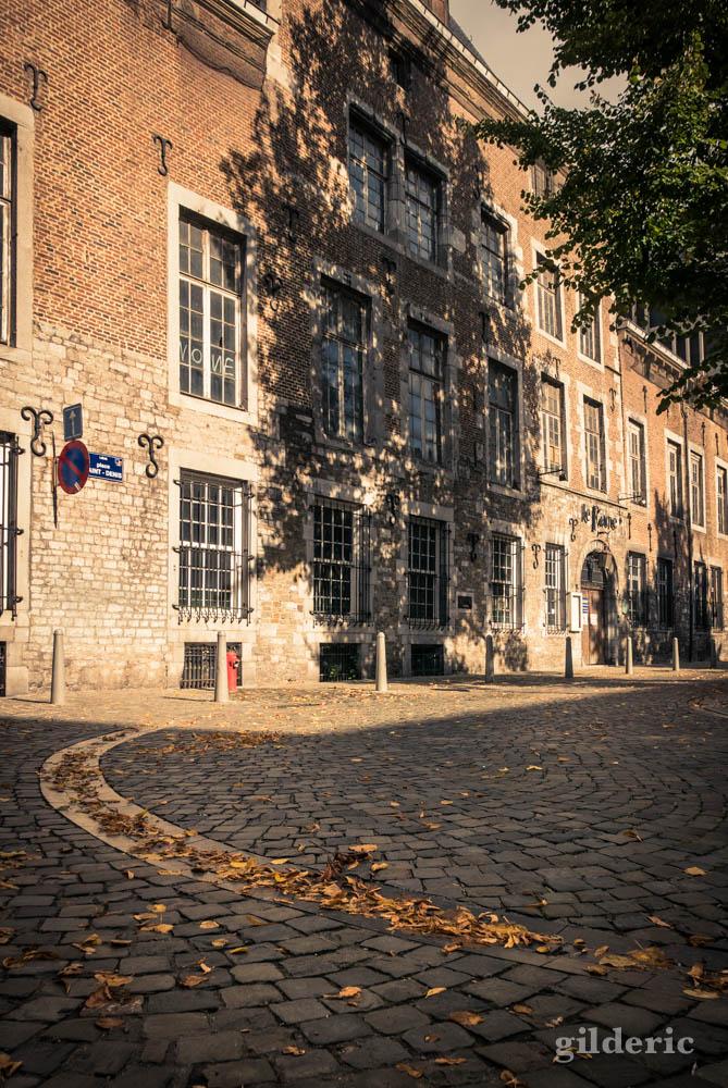 Ombre d'un arbre sur vieille façade (Liège)