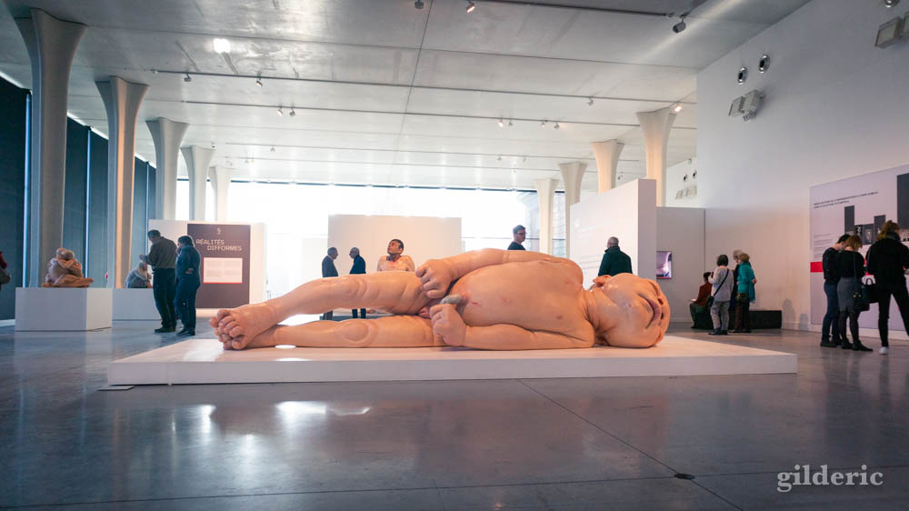 Ron Mueck : A Girl