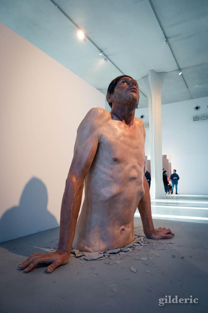 Zarko Basheski : Ordinary Man