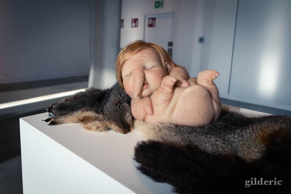 Patricia Piccini : Newborn