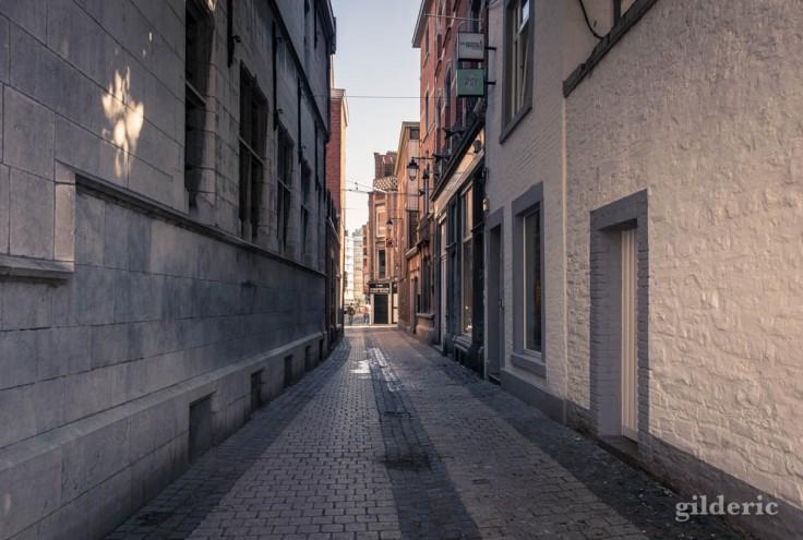 Liège avant le déconfinement : chemin de traverse