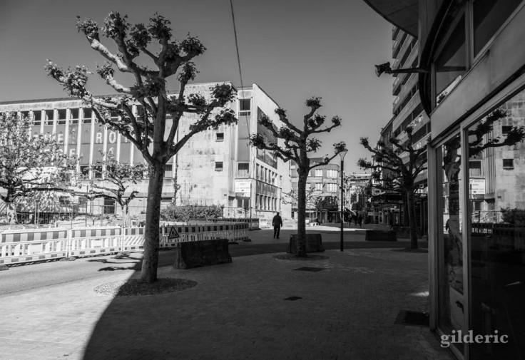 Des arbres et des hommes (Liège) : chroniques du confinement en noir et blanc
